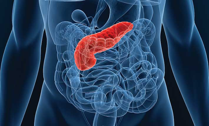 Pancreatic Beta-cell Protection, Hot Targets & Pipeline Analysis